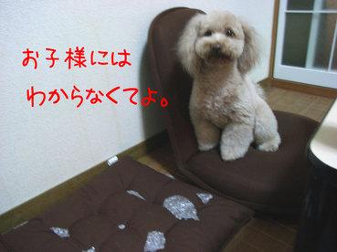 Rimg0120_2
